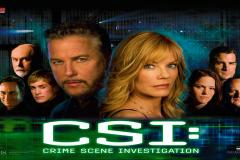 CSI (Stern 2008)