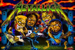 Metallica (Stern 2013)